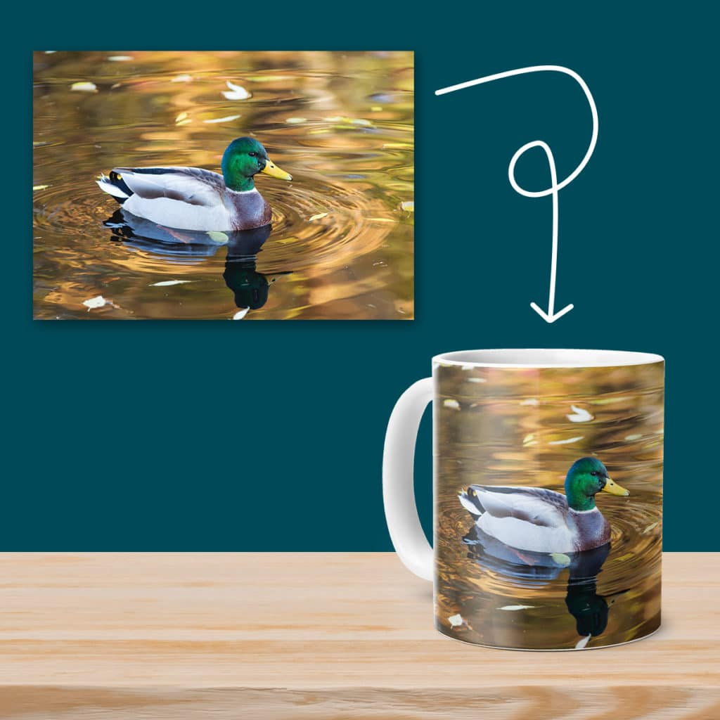 Create stunning wall art or even coffee mugs using your favourite summer photo prints