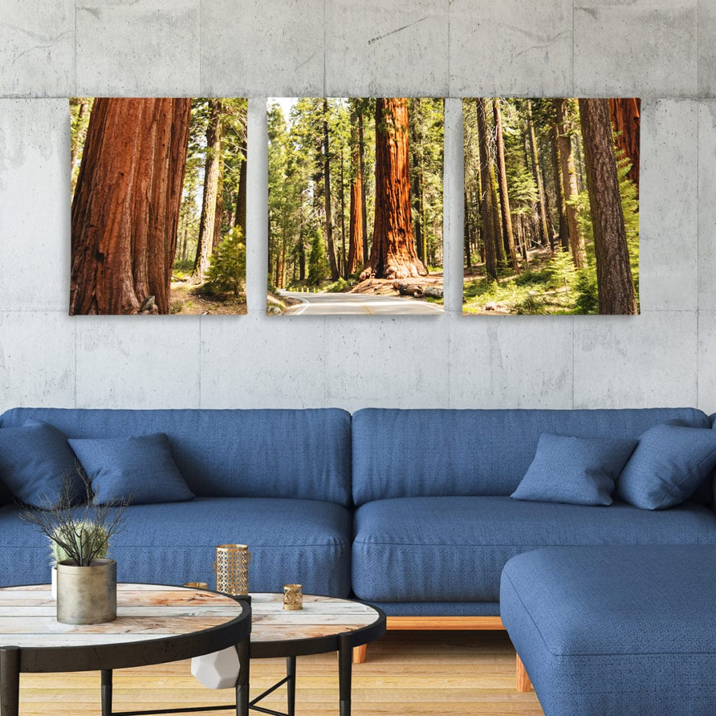 Split Canvas Prints for those stunning panoramic photos you took
