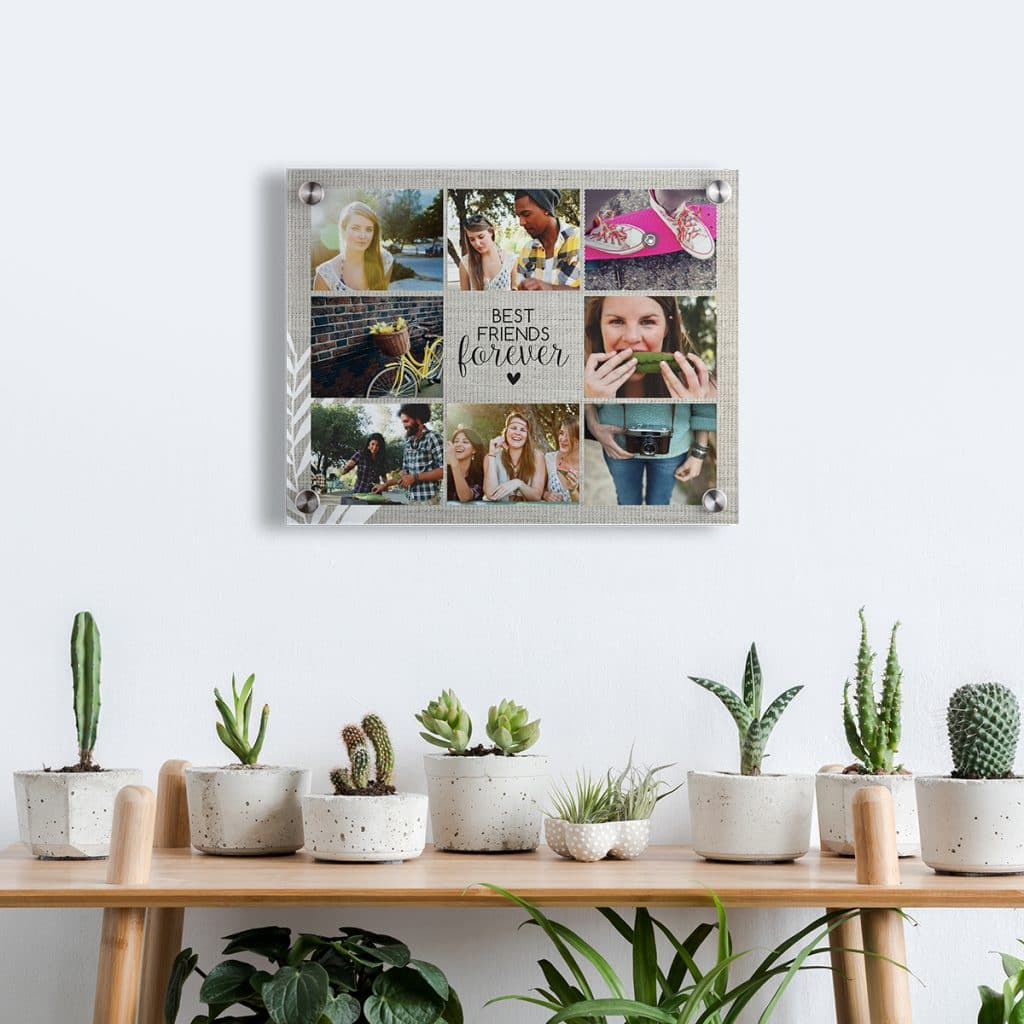 Acrylic print photo collage hanging over a table with cacti and succulents