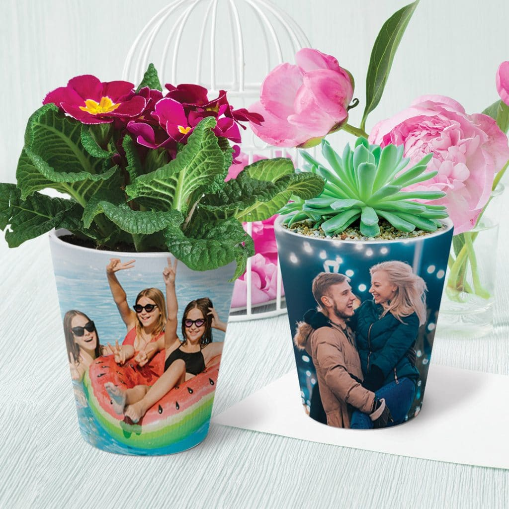 two plant pots on a desk with flowers