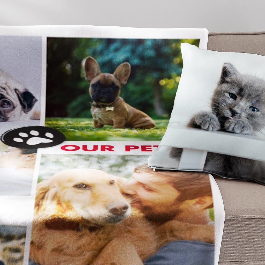 Image of a pillow and blanket featuring adorable pet photos